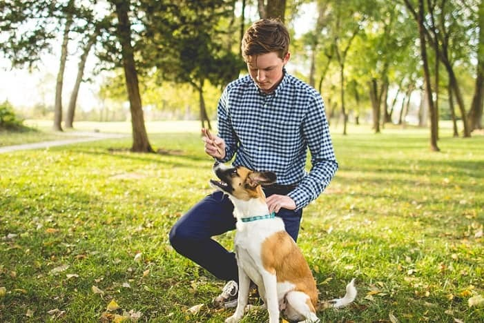 Boys senior picture with a dog